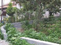 فروش زمین مسکونی 200 متر در تنکابن در شیپور-عکس کوچک
