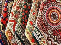 قالیشویی و مبل شویی دنیز در شیپور-عکس کوچک