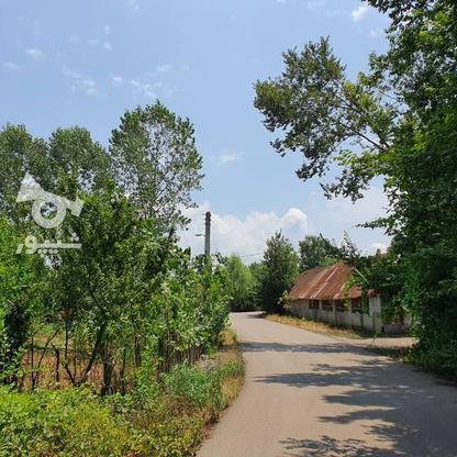 1500 متر زمین مسکونی در حاج سلیم محله در گروه خرید و فروش املاک در گیلان در شیپور-عکس5