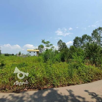 1500 متر زمین مسکونی در حاج سلیم محله در گروه خرید و فروش املاک در گیلان در شیپور-عکس8