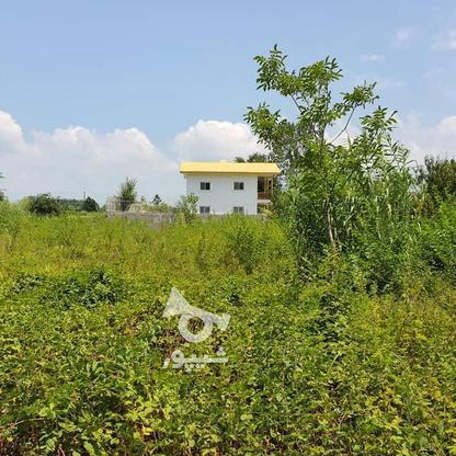 1500 متر زمین مسکونی در حاج سلیم محله در گروه خرید و فروش املاک در گیلان در شیپور-عکس1