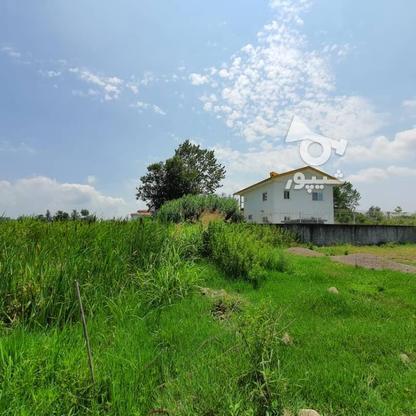 1500 متر زمین مسکونی در حاج سلیم محله در گروه خرید و فروش املاک در گیلان در شیپور-عکس10