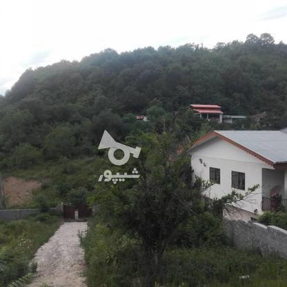 2200 متر زمین با پروانه ساخت در دره جیر در گروه خرید و فروش املاک در گیلان در شیپور-عکس13