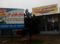 مشارکت درقالیشویی  در شیپور-عکس کوچک