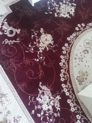 فرش 9متری تمام نخ در گروه خرید و فروش لوازم خانگی در کرمانشاه در شیپور-عکس1