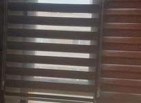 3عدد پرده زبرا  در شیپور-عکس کوچک