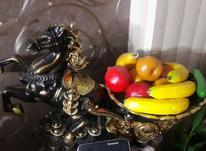میوه خوری و دکوری اسب در شیپور-عکس کوچک