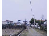 زمین مسکونی 260 متر در سرخرود در شیپور-عکس کوچک