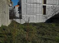 زمین مسکونی 380 متر در رضوانشهر در شیپور-عکس کوچک