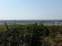 فروش زمین کشاورزی 200 متر در آبندانکش در شیپور-عکس کوچک