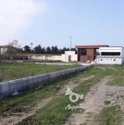 زمین283 مترمحمودآباد/جاده خانه دریا/جنگلی/سنددار در گروه خرید و فروش املاک در مازندران در شیپور-عکس1