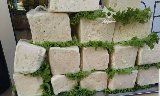 عسل وحشی طبیعی گرده گل ژله رویال پنیرو روغن حیوانی  در گروه خرید و فروش خدمات و کسب و کار در تهران در شیپور-عکس6