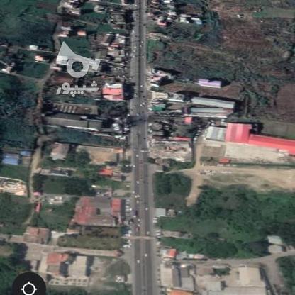 340 متر زمین بر دوم جاده اصلی لاهیجان به لنگرود در گروه خرید و فروش املاک در گیلان در شیپور-عکس4