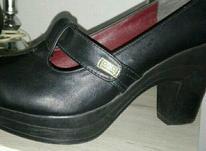 کفش برند گوچی پاشنه 7 سانت سایز 40  در شیپور-عکس کوچک