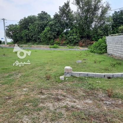 زمین مسکونی 240 متر در آمل در گروه خرید و فروش املاک در مازندران در شیپور-عکس3