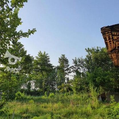 900 متر زمین مسکونی در آهندان  در گروه خرید و فروش املاک در گیلان در شیپور-عکس6