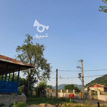 900 متر زمین مسکونی در آهندان  در گروه خرید و فروش املاک در گیلان در شیپور-عکس7