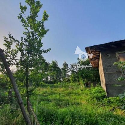900 متر زمین مسکونی در آهندان  در گروه خرید و فروش املاک در گیلان در شیپور-عکس4