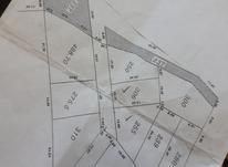 نوشهر هلستان جنوبی زمین 310 متری در شیپور-عکس کوچک