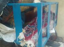 گاری دستی نونو در شیپور-عکس کوچک