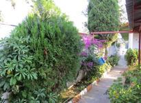 فروش زمین مسکونی در دهنو در شیپور-عکس کوچک