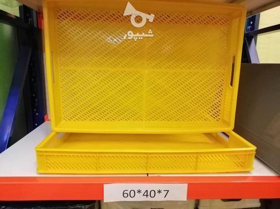 تولید و پخش جعبه و سبد پلاستیکی در گروه خرید و فروش خدمات و کسب و کار در تهران در شیپور-عکس1