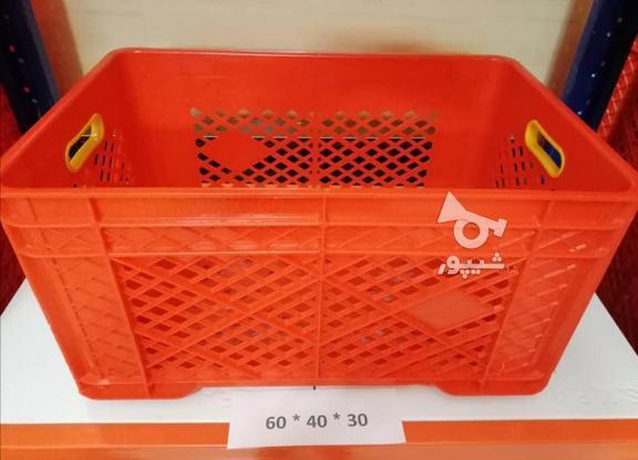 تولید و پخش جعبه و سبد پلاستیکی در گروه خرید و فروش خدمات و کسب و کار در تهران در شیپور-عکس3