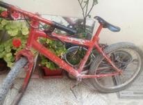 دوچرخه سواری در شیپور-عکس کوچک