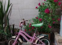 دوچرخه 12 فروشی در شیپور-عکس کوچک