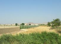 فروش زمین ویلا و باغ سازی در شیپور-عکس کوچک
