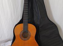 گیتار خوش صدا در شیپور-عکس کوچک