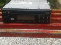 ضبط زانتیا در شیپور-عکس کوچک