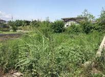 فروش زمین مسکونی 242 متر در نشتارود در شیپور-عکس کوچک