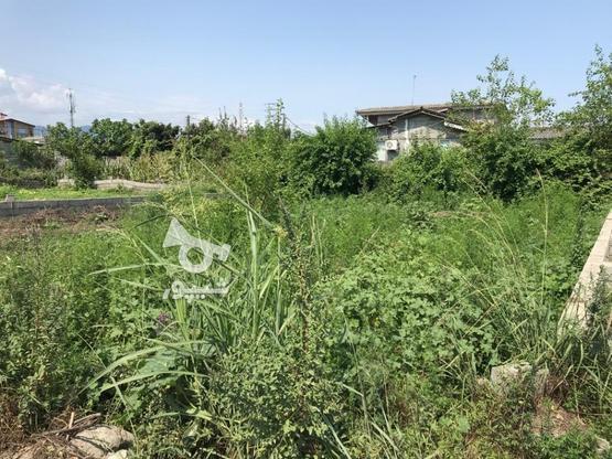 فروش ویژه زمین مسکونی 242 متر در نشتارود در گروه خرید و فروش املاک در مازندران در شیپور-عکس1