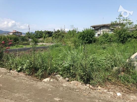 فروش ویژه زمین مسکونی 242 متر در نشتارود در گروه خرید و فروش املاک در مازندران در شیپور-عکس4