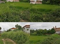 فروش زمین مسکونی 200 متریداخلبافت نور در شیپور-عکس کوچک