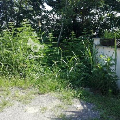 365متر زمین شهرکی ارام شمال در گروه خرید و فروش املاک در مازندران در شیپور-عکس1