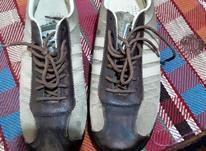 فروش کفش نو سالم شماره40 در شیپور-عکس کوچک