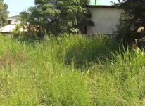 فروش زمین مسکونی 200 متر یباسنددر نور در شیپور-عکس کوچک