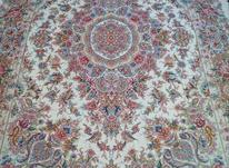جفت فرش و فرش در شیپور-عکس کوچک