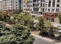 اجاره تجاری و مغازه 18 متر در شهرک غرب در شیپور-عکس کوچک