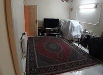 43متر/قصرالدشت_مرتضوی/طبقه دوم در شیپور-عکس کوچک