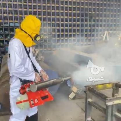 خدمات ضدعفونی و گندزدایی با مه پاش در گروه خرید و فروش خدمات و کسب و کار در تهران در شیپور-عکس1