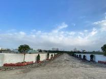 زمین مسکونی 300 متر در آمل آفتاب 50 در شیپور
