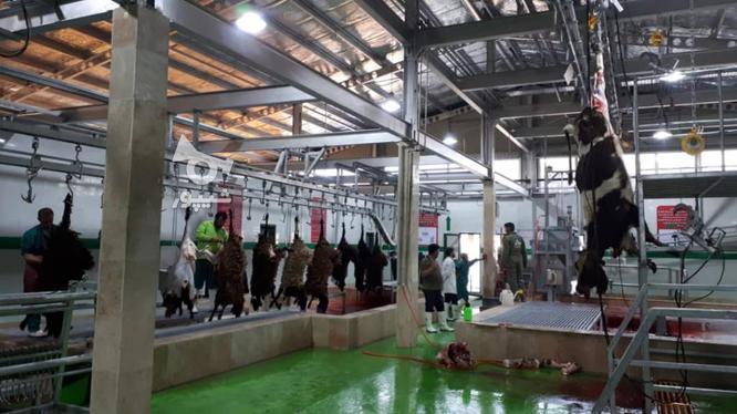 طراحی و ساخت کشتارگاه های صنعتی دام  در گروه خرید و فروش خدمات و کسب و کار در تهران در شیپور-عکس1