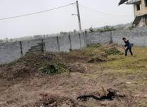 856متر زمین دور محصور مسکونی سند دار در لیالمان لاهیجان در شیپور-عکس کوچک