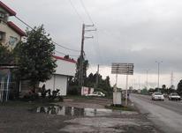 فروش زمین اداری و تجاری 182 متر در تنکابن در شیپور-عکس کوچک
