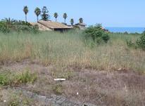 فروش زمین ساحلی2680 متر در رامسر در شیپور-عکس کوچک