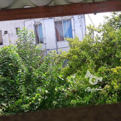 خونه کلنگی 300 متر در خیابان محبوبی بابلسر در گروه خرید و فروش املاک در مازندران در شیپور-عکس1