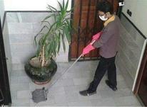 ارسال کارگر به محل مورد نظافت  در شیپور-عکس کوچک